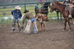 2009 Annual Rodeo and Vaquero Challenge